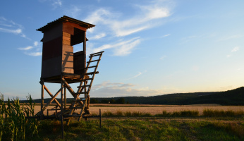 Hunting on Private Land: Behavior and Etiquette