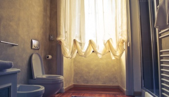An informative look at cat toilet training.