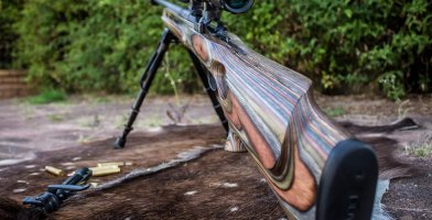 Best .22 Rifles Reviewed & Rated for Quality