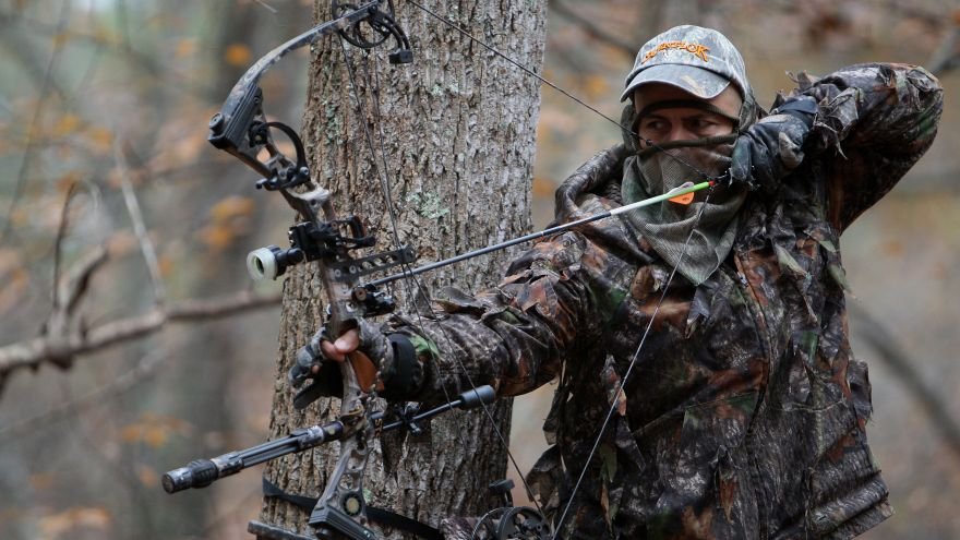 Bow Hunting Deer Series