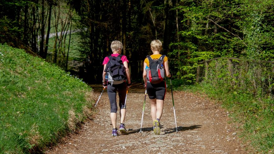 An in-depth guide to all of the health benefits of nordic walking.