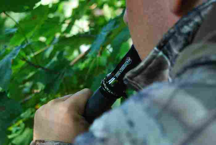 using a deer call